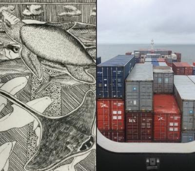 October 5-November 19, 2017: 30 Days at Sea – New Work by Tim Christensen